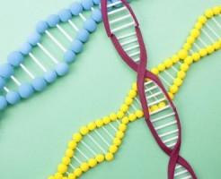 採血して遺伝子を検査するだけでうつ病が診断できる