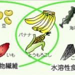 食物繊維はうつ病に良い