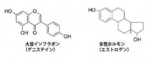 大豆にはイソフラボンが含まれ妊娠うつ病を予防する食べ物です