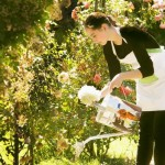 ガーデニングによる園芸療法はうつ病に良い