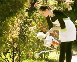 うつ病を改善するならガーデニングによる園芸療法が良い