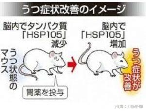 うつ病のマウスのうつ症状を改善する既存の胃薬とは