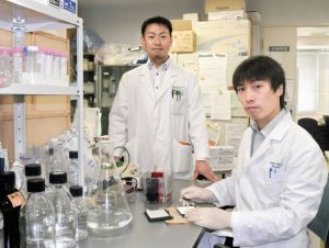 鳥取大学はβ-ヒドロキシ酪酸がうつ病を改善すると発表