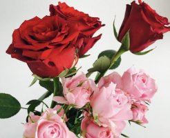 バラの香りはうつ状態に効果がある